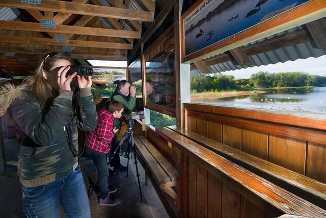 Bicentennial Park - Bird watching Hide - Photo by Paul K Robbins
