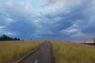 Walk or ride your bike to discover grasslands at Sydney Olympic Park