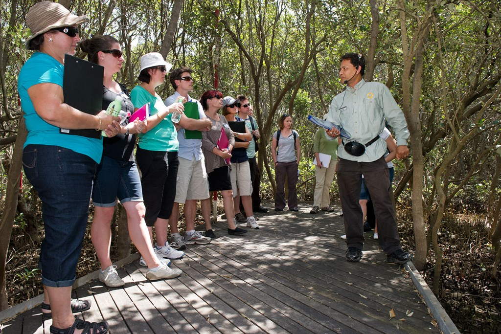 Bicentennial Park Sydney Olympic Park - WET Workshop within the Badu Mangroves - Paul K Robbins