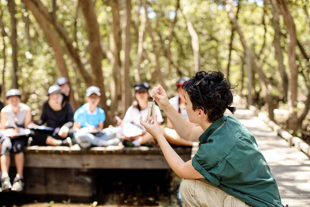 Sydney Olympic Park - Secondary school excursion program in the Badu Mangroves - Photo by James Horan