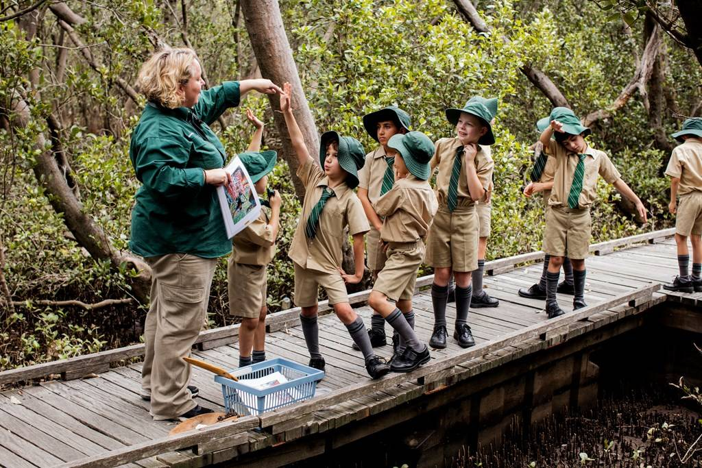 Sydney Olympic Park - children on a primary school excursion program in the Badu Mangroves - Photo by James Horan