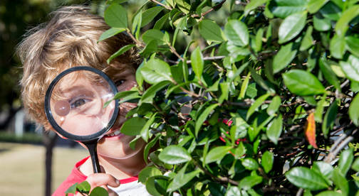boy peeking behind tree through magnifying glass backyard hunt