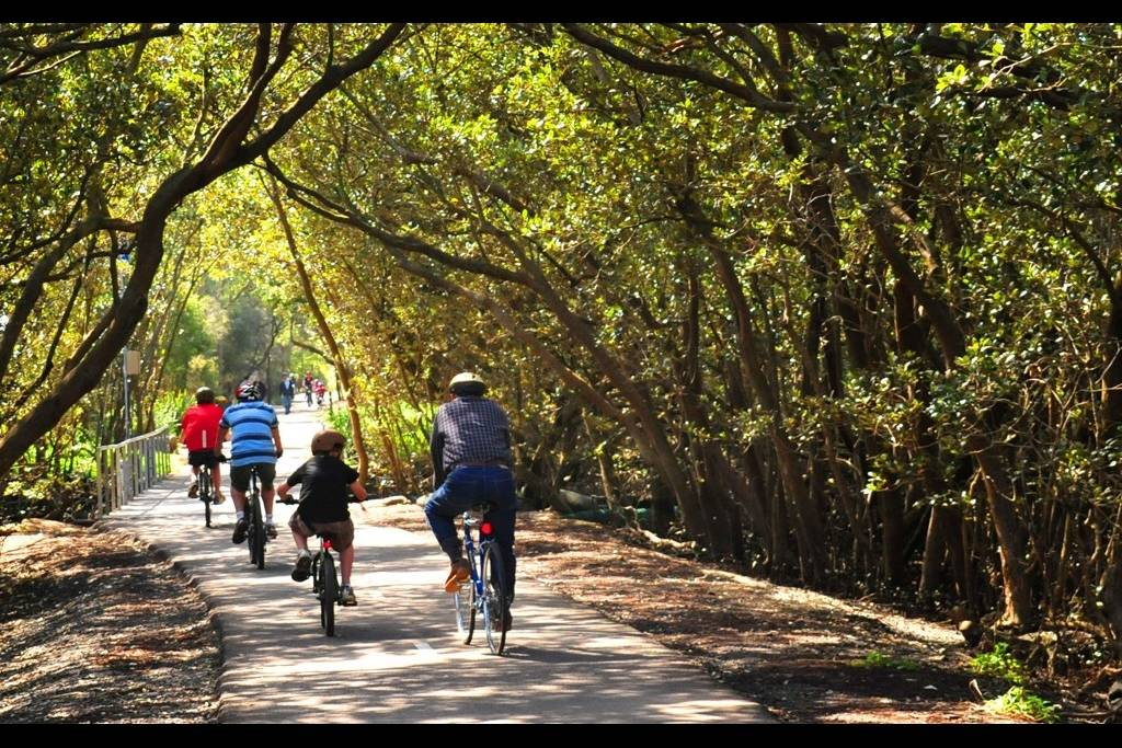 Sydney Olympic Park - cycling in Bicentennial Park - Photo by Fiora Sacco