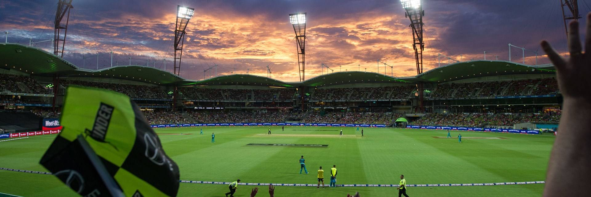T20 at Sydney Showground Stadium